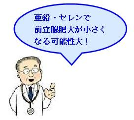 亜鉛・セレンで前立腺肥大が小さくなる可能性大!
