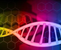 網膜色素変性に対する遺伝子治療